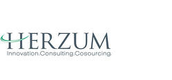 Herzum | Innovative Consulting Group